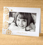 Elegant Ornaments Photo Christmas Card set of 18   Card Only Personalization